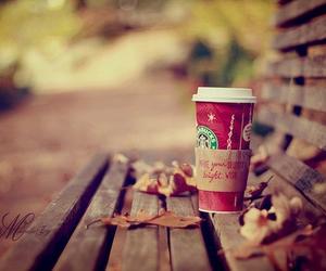 starbucks, autumn, and coffee image