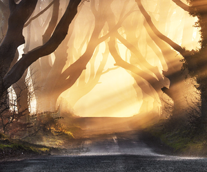 hobbit, sun, and road image