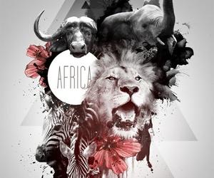 africa, design, and animals image