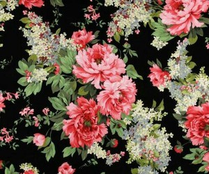 background, beauty, and floral image