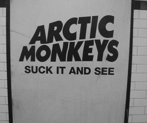 arctic monkeys, music, and suck it and see image