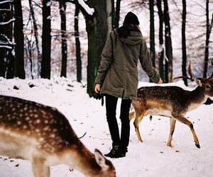 deer, girl, and snow image