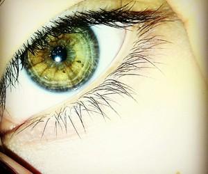 dark, eyes, and hazel image