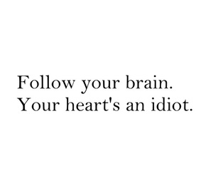 brain, heart, and idiot image