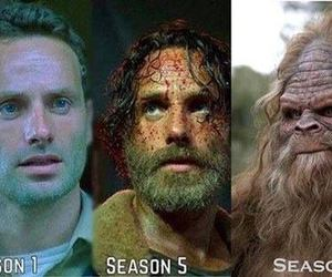 funny, the walking dead, and rick grimes image