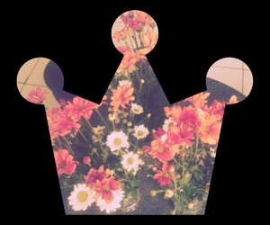 crown, pink, and flowers image