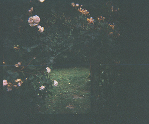 dark, diana, and flowers image