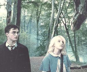 harry potter, luna lovegood, and luna image