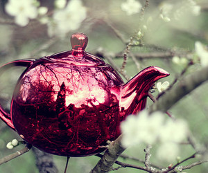 pink, teapot, and cute image