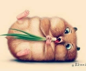 cute, ♥, and hamster image