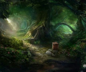 fantasy, wood, and magic image