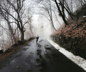 nature, winter, and cold image
