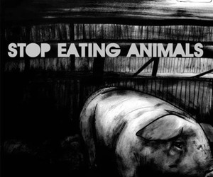 animals, vegetarianism, and veganism image