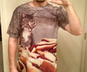 car, funny, and cats image