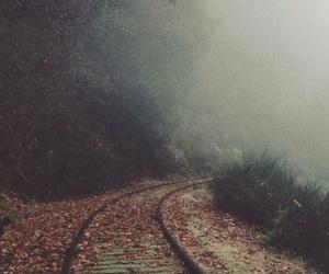 train, nature, and autumn image
