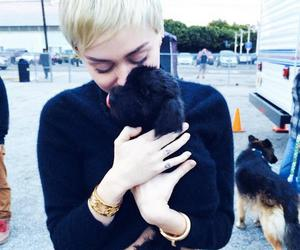 sweet, love, and miley cyus image