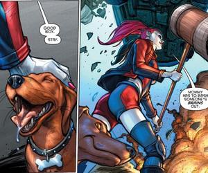 harleen quinzel, harley quinn, and dc comics image