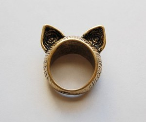 ring and ears image