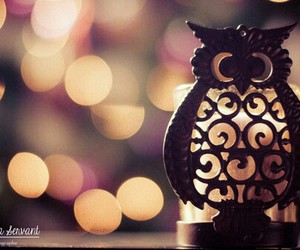candle, lights, and owl image