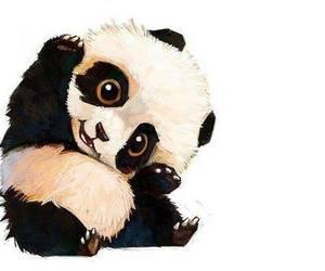 panda, animal, and art image