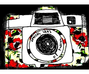 camera, collours, and flowers image