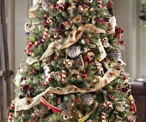 christmas tree, christmas, and christmas decor image