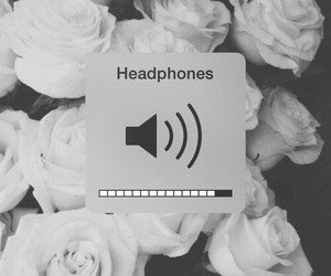 headphones, music, and rose image