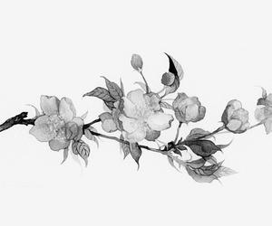 Image by yu dash kin