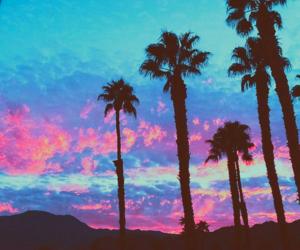 beautiful, summer, and sunset image