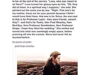 harry potter, luna, and tumblr image