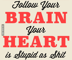 stupid, brain, and follow image