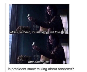 fandom, funny, and the hunger games image