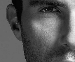maroon 5, perfection, and adam levine image