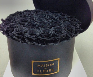 black, flowers, and rose image