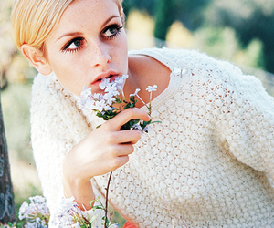 twiggy, flowers, and model image