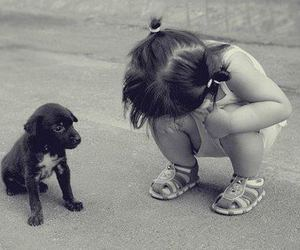 baby, black and white, and dog image