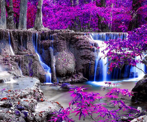 purple, nature, and waterfall image