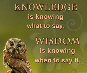knowledge, words, and owl image