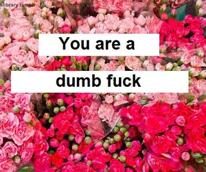 dumb, flowers, and fuck image