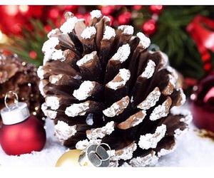 christmas, christmas tree, and pine cone image