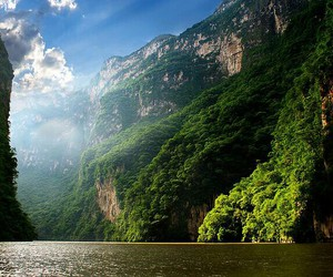 nature, mexico, and green image