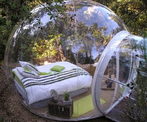 bed, nature, and room image