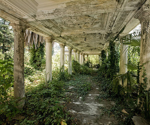 nature, abandoned, and green image