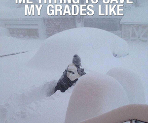 funny, grades, and lol image