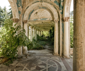 abandoned and nature image