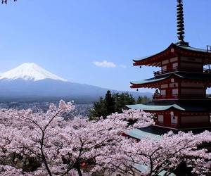 fuji and travel image