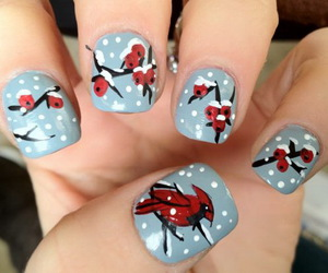 birds, nails, and christmas image