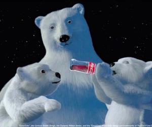 bear, winter, and coca-cola image