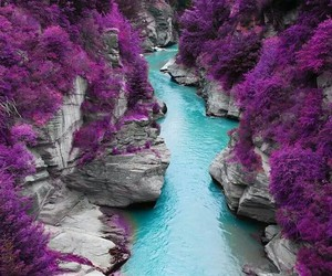 river, violet, and wow image