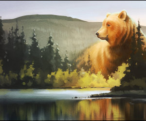 bear, forest, and nature image